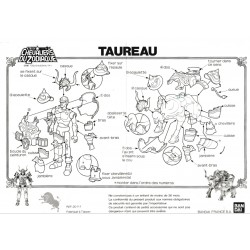 Notice Taureau FR pdf